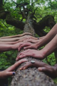 Hands Together - Family Relationships - Parent & Family Counseling - Greenville, SC 29615